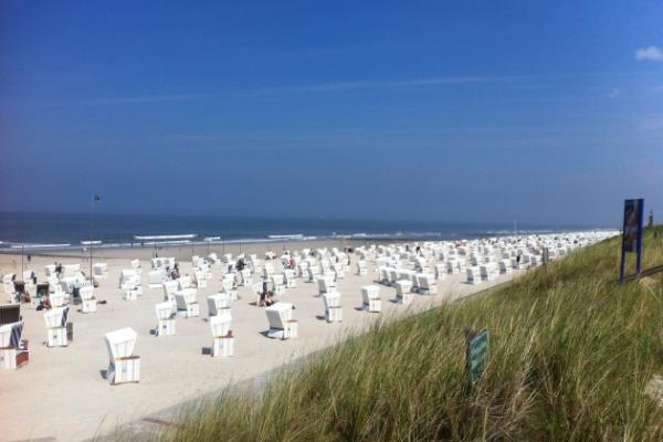 Zum Tee oder Krabben essen nach Wangerooge, Norderney, Juist...