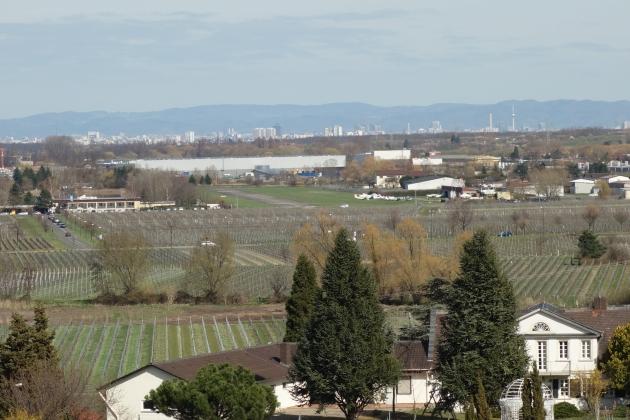 Blick auf den Flugplatz Bad Dürkheim, im Hintergrund Mannheim und Odenwald